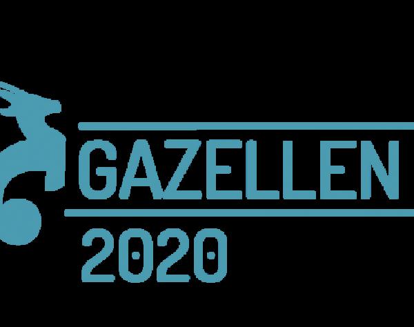 fd gazellen award DynamicsConsultants